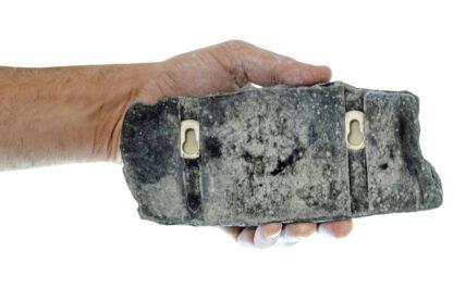 Triple key holder with screw mount